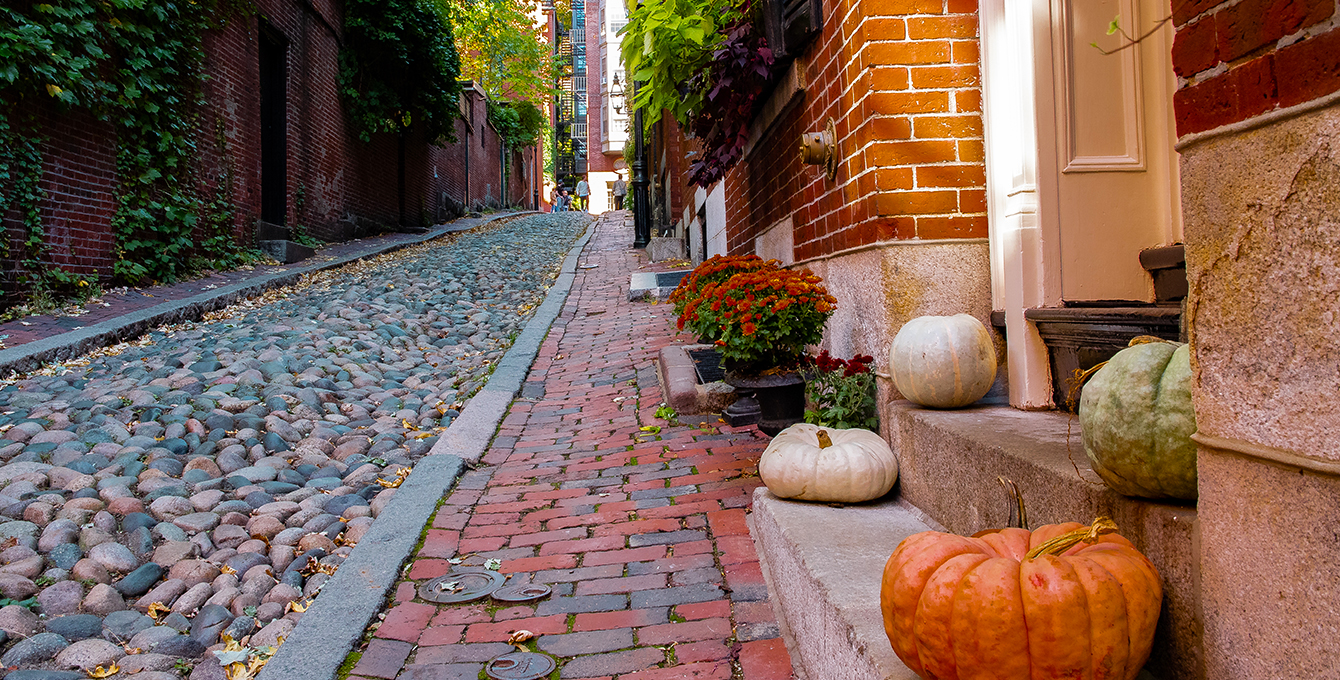 The Ultimate Roundup of Boston's Best Fall Activities